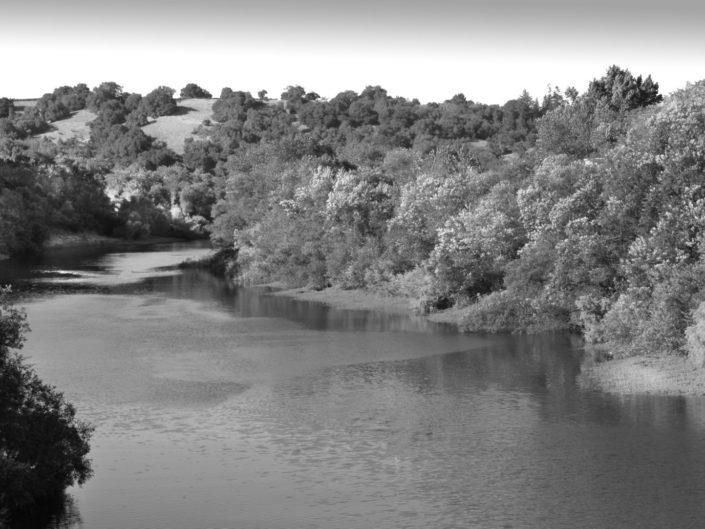 Russian River Healdsubrg