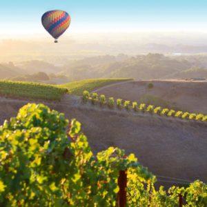 Hot Air Balloon,healdsburg vineyards
