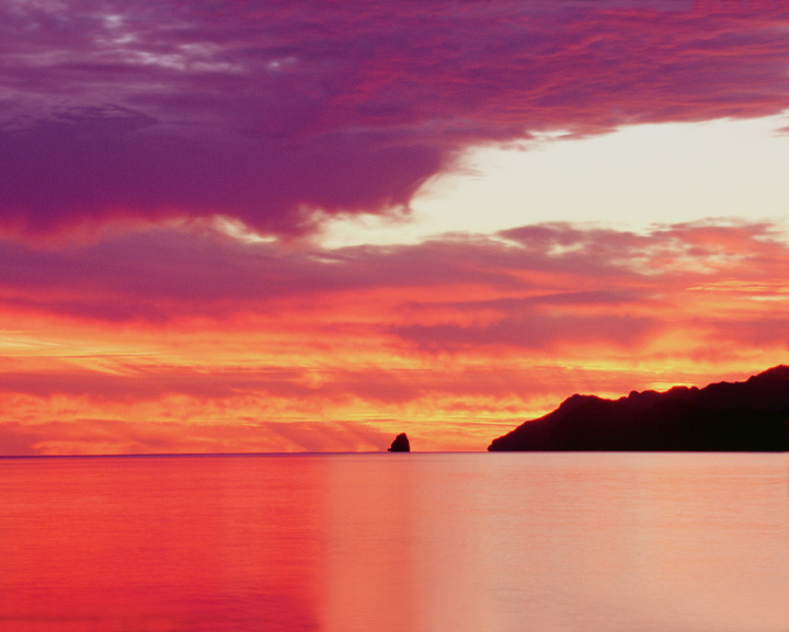 ocean sunset in pink and purple