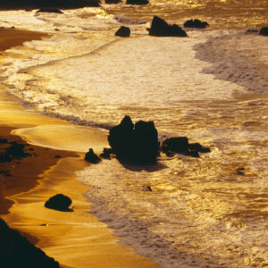 golden water at the shoreline
