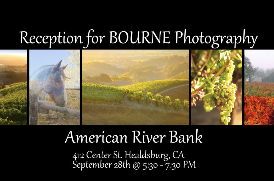 Reception and Show at American River Bank, Healdsburg