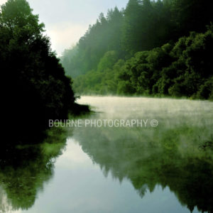 Russian River Morning Mist