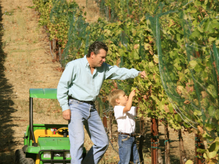 Father and Son in the vineyard