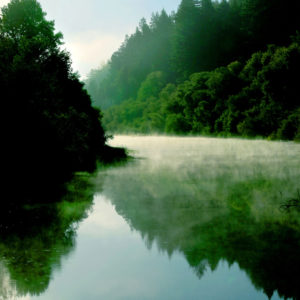 Russian River misty morning
